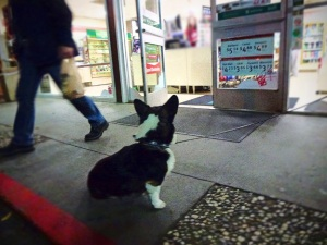 Ranger at convenience store, waits for hotdog.