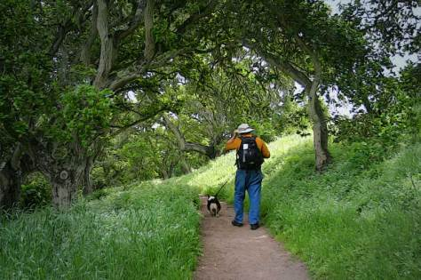 Jeff and Ranger under the California Oaks at Fort Ord, some welcome shade.