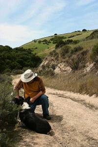 Always bring water for your dog. Be patient while he sits in the shade to catch his breath.