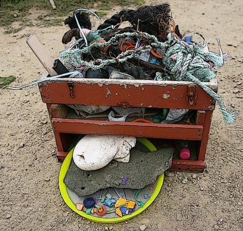 On a wind swept Point Reyes beach we free style collected this flotsam.